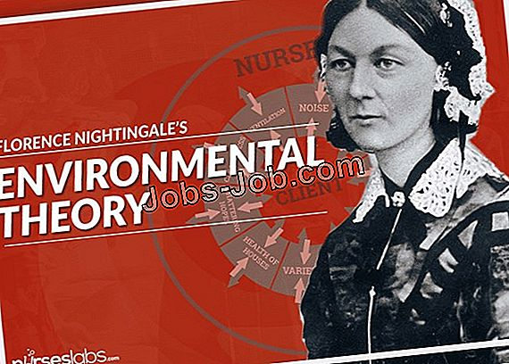 Nursing Theories Of Florence Nightingale